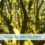 Yoga für den Rücken im YogiRaum